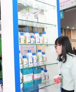 Chinese Visitors at Patron Group