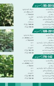 Cotton Seed Brochure3