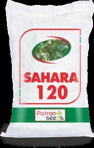 Sahara 120 Brochure