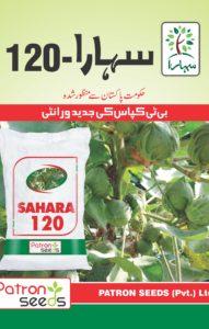 Sahara 120 Brochure1