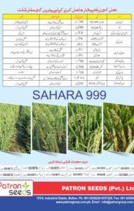 Sahara 999 Hybrid RICE Brochure4