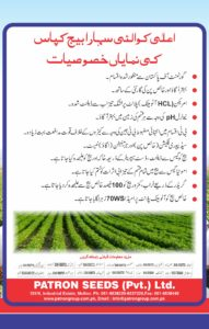 Sahara Cotton Seed Brochure4