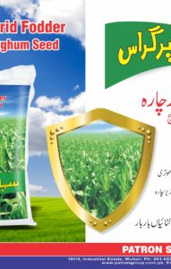 Sahara Super Grass Brochure1