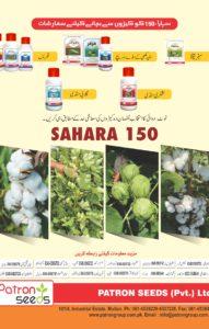 sahara 150-4